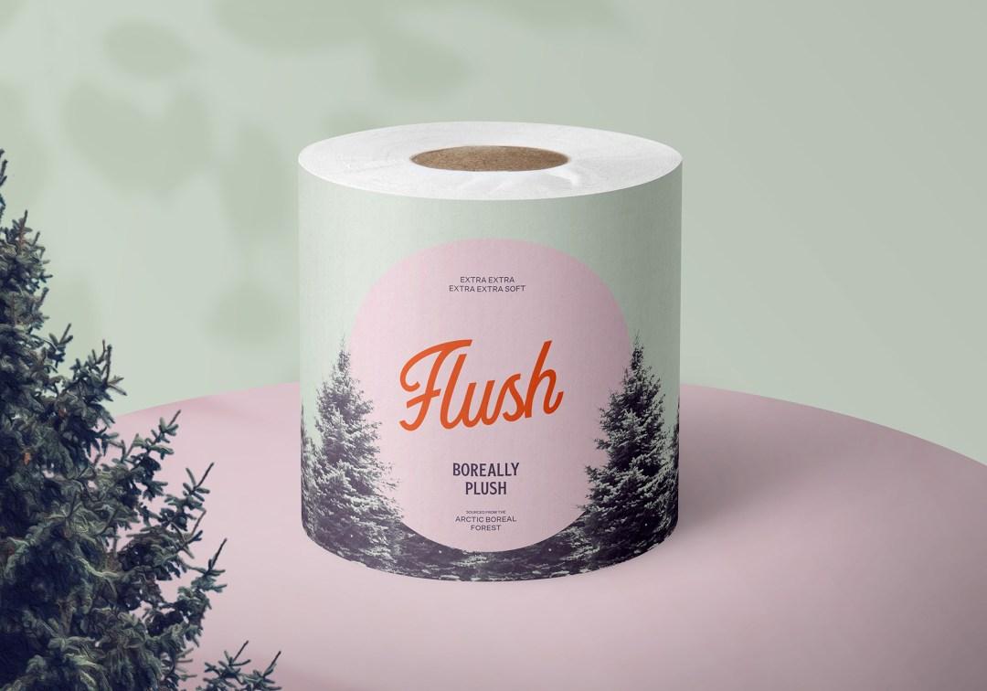 2021 softest toilet paper