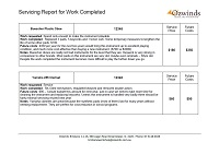 Servicing report Page 3