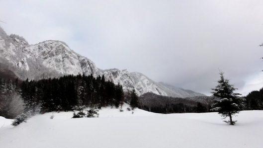 Masivul Postăvarul iarna