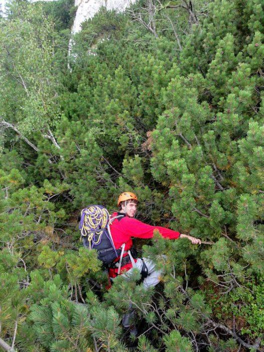 jnepeni_traseul izvorului_alpinism
