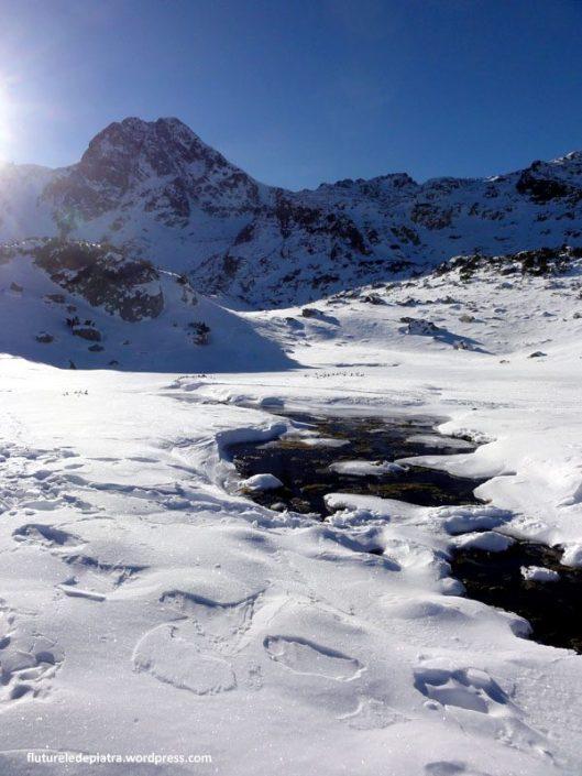 Lacul Pietrele si Valea Pietrele, Retezat