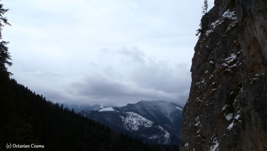winter panorama piatra craiului