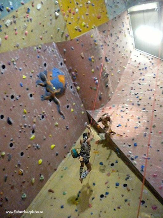 fish throwing competition belgian climbing gym