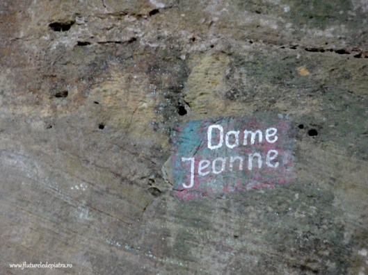 dame jeanne climbing name