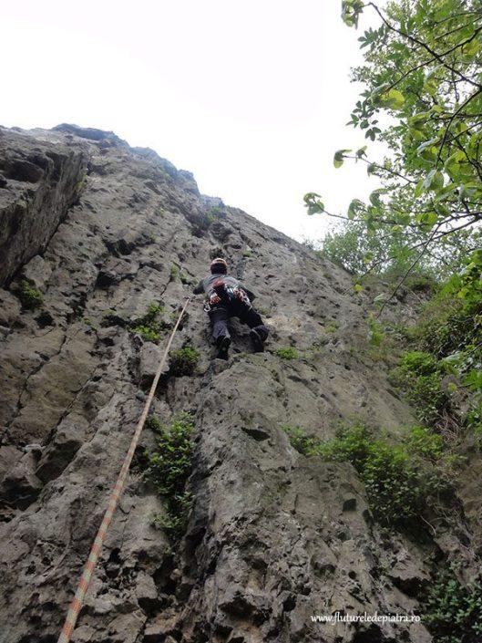 lead climbing beez, belgium