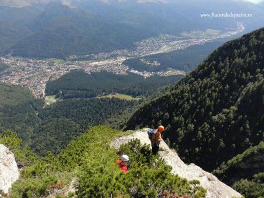 Busteni, panorama Varful Picatura