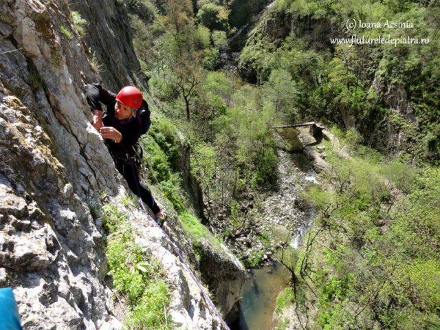 alpinism romania, jenci bacsi