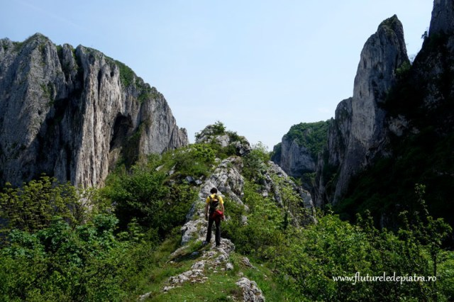trasee usoare alpinism cheile turzii