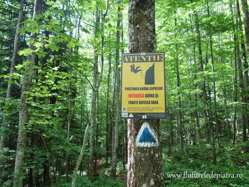 marcaj turistic brana caprelor buila