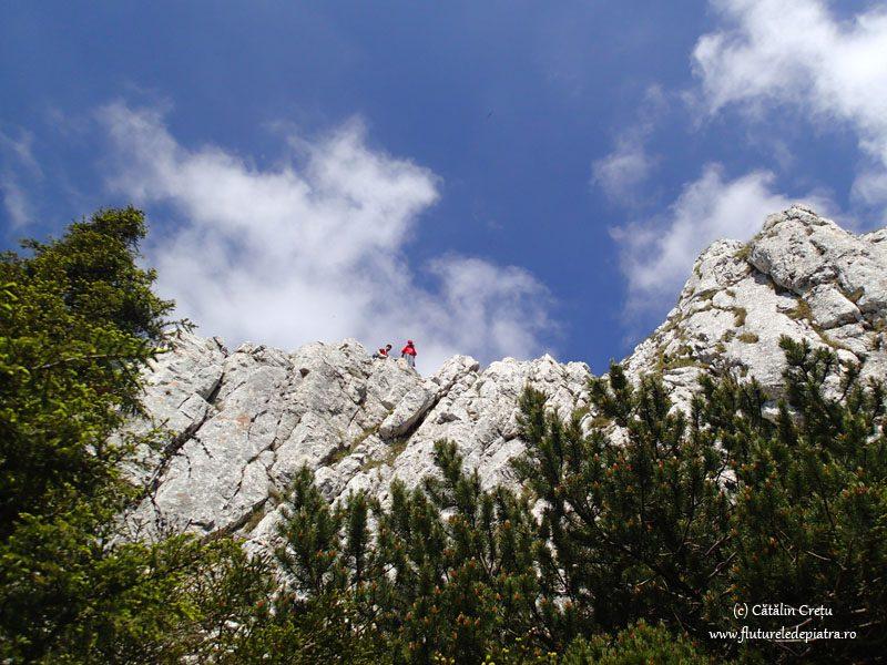 retragere din turnul mare al dianei, piatra craiului