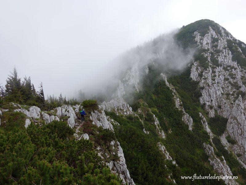 ceata la munte