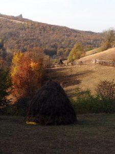 Tara Motilor Romania