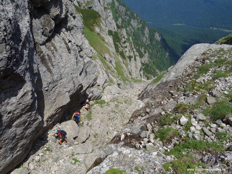 plimbare valea alba vara_muntii bucegi (29)