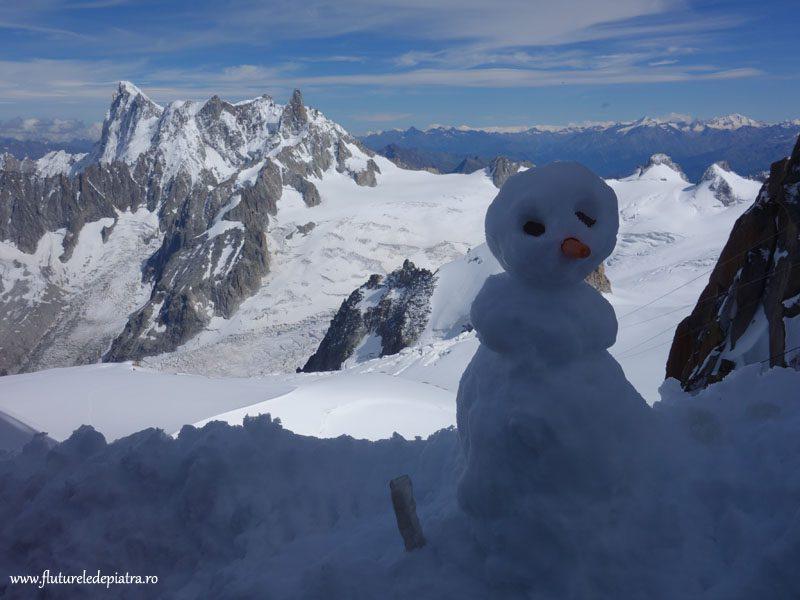 panoramă alpi mos de zapada