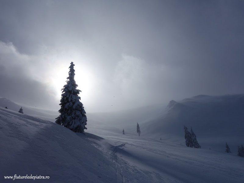 schi de tură Vidra, Munții Latoriței