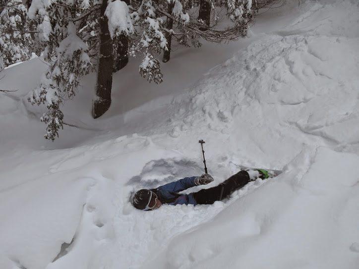 ski de pârtie transalpina