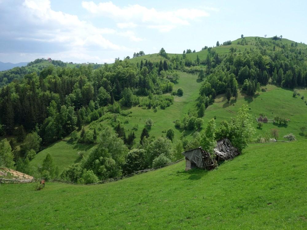 căpițe defn și case pe dealuri, Satul Măgura