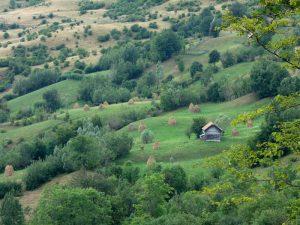 peisaj rural: casă cu căpițe de fân pe Valea Prahovei, satul Secăreni