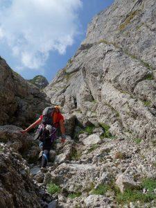 Pe terenul accidentat din Valea Coștilei, vara in muntii bucegi