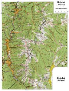 hartă munții Baiului