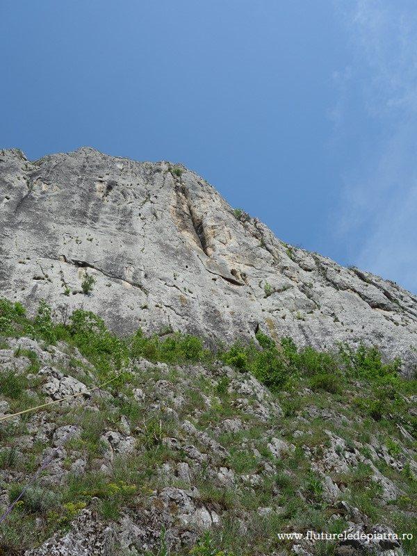 peretele Colțul Cetății din Cheile Aiudului, traseul Diedrul Cafeniu