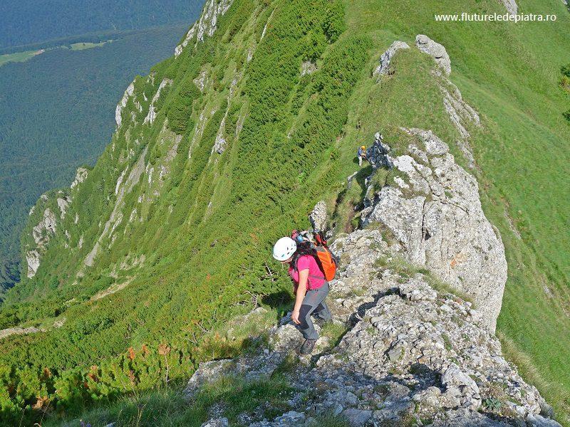 Creasta Ascuțită spre Acele Morarului, traseu nemarcat Munții Bucegi