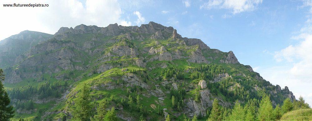fața sudică a Morarului, Munții Bucegi
