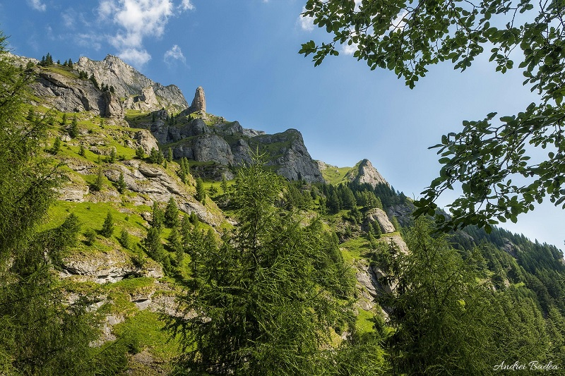 peisaj clasic pentru sudul Morarului: brâuri și șistoace