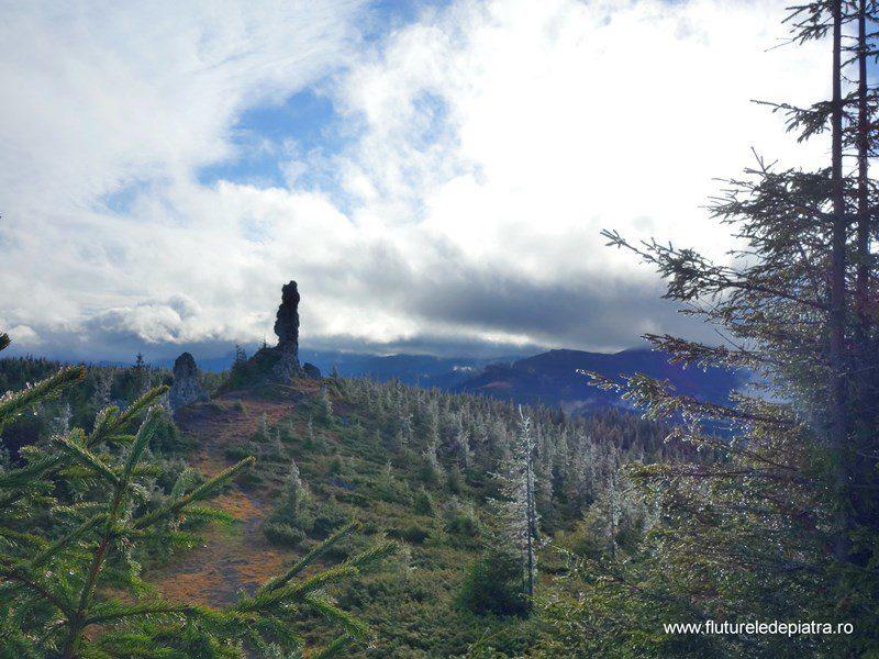 12 Apostoli înghețați în prag de iarnă, munții călimani panoramă