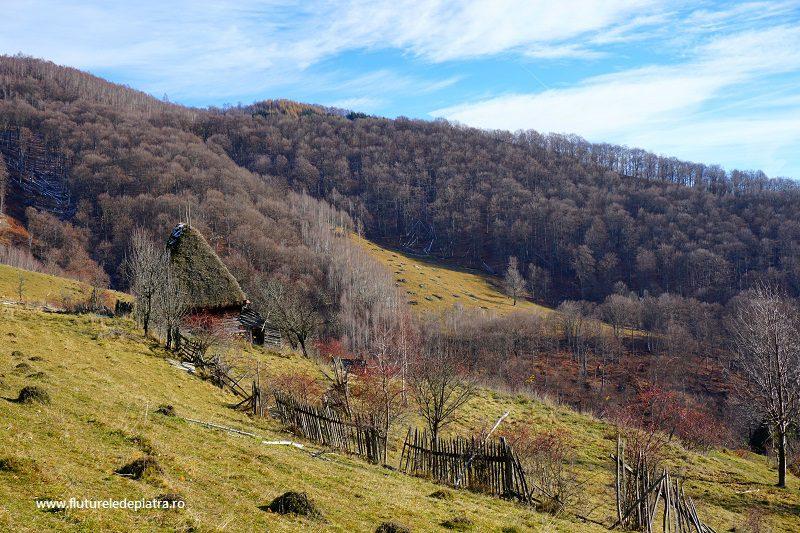 case tradiționale ardelenești în rezervația Scărița Belioara