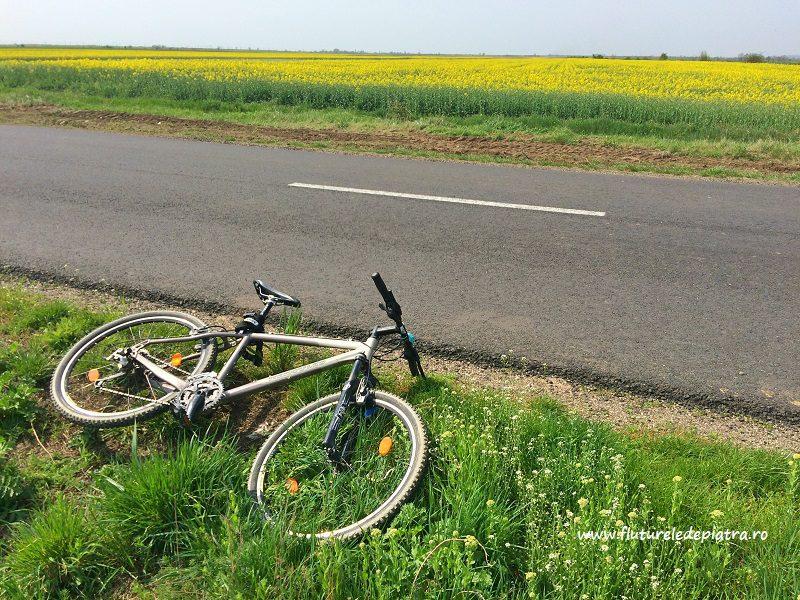 traseul de bicicletă spre Sărata Monteoru, Buzău