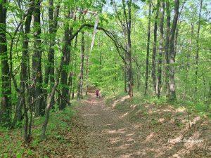 traseu de bicicletă pe dealurile de lângă Buzău, xc race sarata monteoru