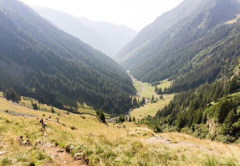 Valea Rea, traseu scurt spre Vârful Moldoveanu