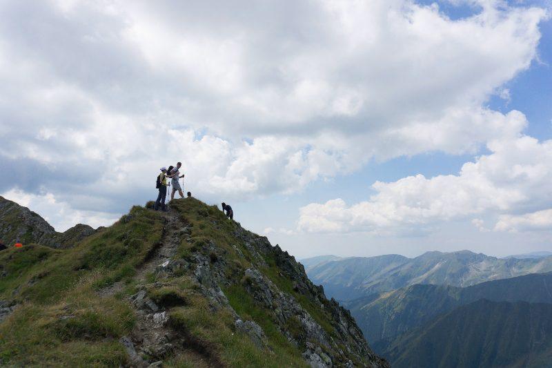 pe creasta dintre Vârful Viștea Mare și Vârful Moldoveanu, Muntii Fagaras