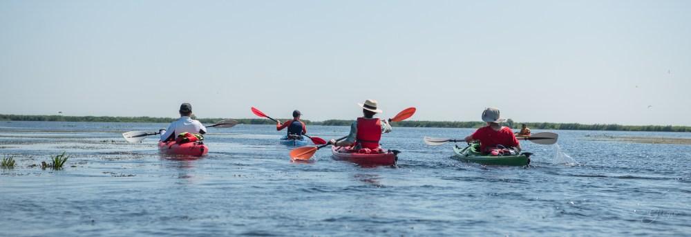 Poză de grup cu caiacele în delta dunarii, kayaking