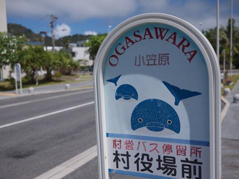 30歳無職が沖縄か北海道に移住して再スタートしようと頑張るブログ