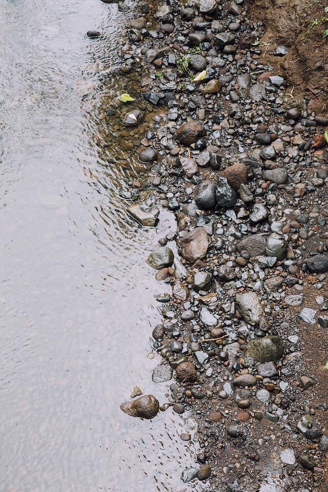 FLUX An Upstream Battle Keanae