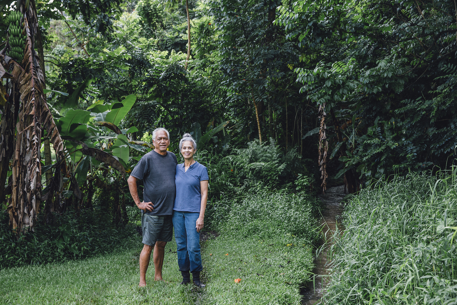 east maui water rights