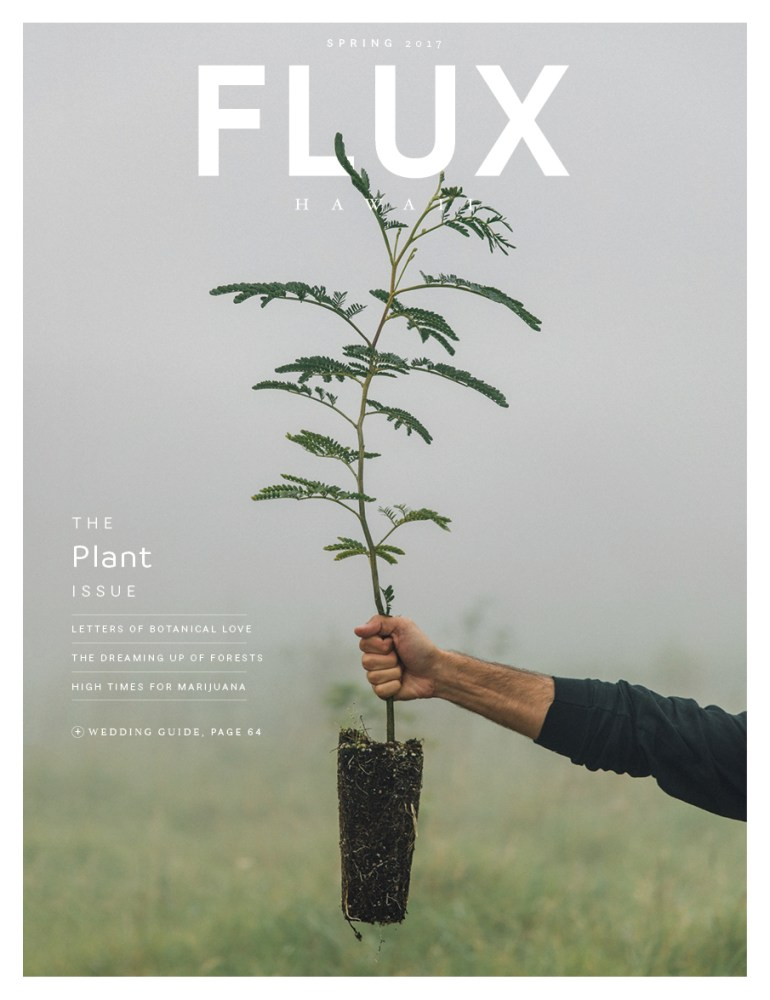 Issue 29 - Plants