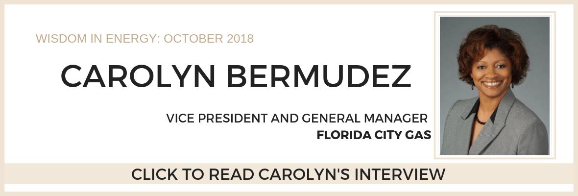Carolyn Bermudez Homepage Banner