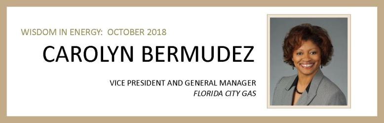 Carolyn Bermudez Email and Interview Banner.jpg