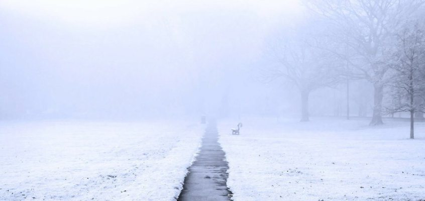 finger lakes weather forecast thanksgiving weekend travel fog rain snow