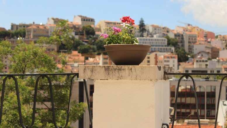 Portugal Resale Property Prices to Stall