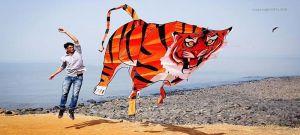 3d-tiger-kites-adk-ashok-designer-kites-Fly360