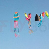 History Of Kites: Everything You Need To Know About