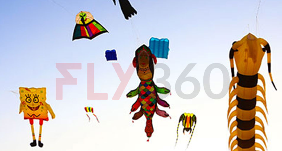 various kites - International Kite Festival