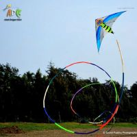 4 Different Types of Stunt Kites You Should Know