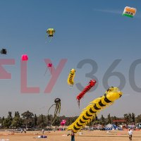 Kite Festival in Ahmedabad 2019 - Detail Schedule of the Event