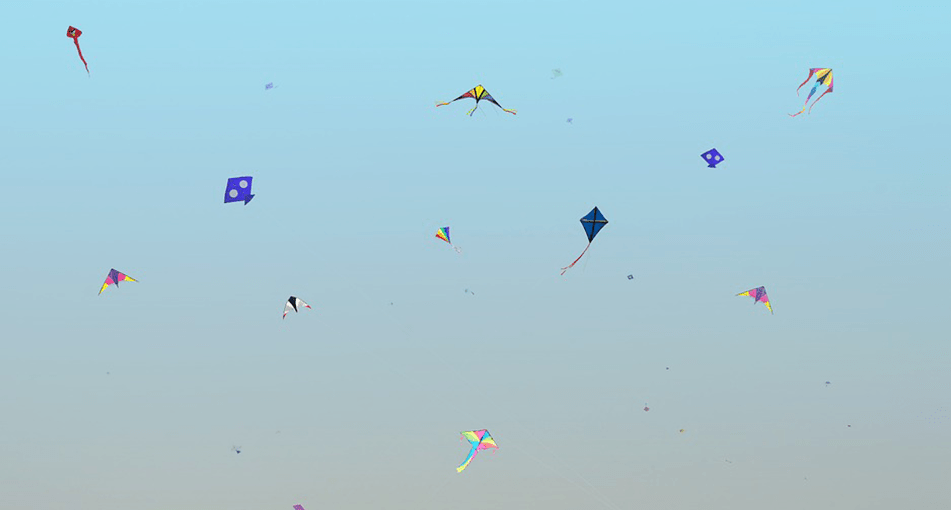 nepali kites in the air