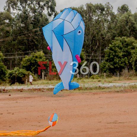 fly360 fish kite